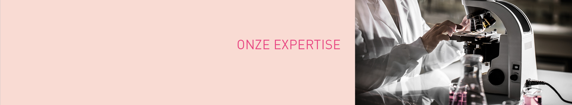 Onze expertise